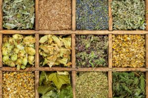 27830572-assorted-medical-dried-herbs